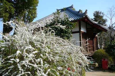 kumeyuki18.jpg