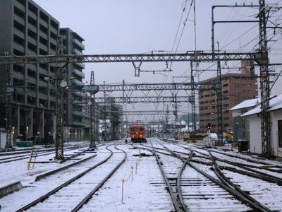 yagiyuki05.jpg