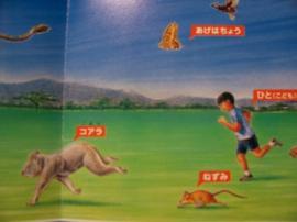 コアラが走ってる??