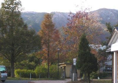 kouyou-071123.jpg