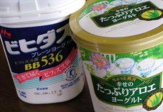 yo-guru1-0605.jpg