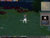 mabinogi_2006_05_11_005.jpg