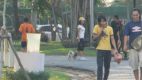 公園で犬はダメ!