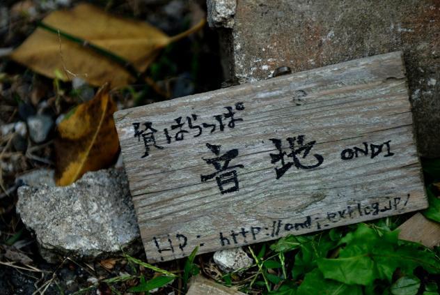 谷中-原っぱ
