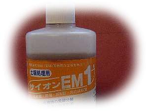 emeki01.jpg