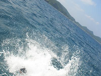 20081012c.jpg