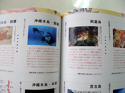 20081113c.jpg