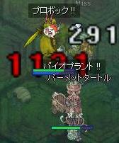 亀vsケミ騎士