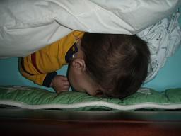 BBの昼寝
