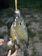 魚つり5月08年
