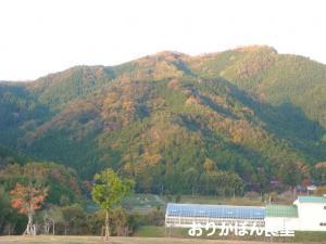 20091114-0.jpg