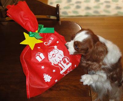 09クリスマスプレゼント2
