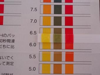 小型ボンベ切り替え後pH