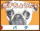 banner6.jpg