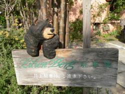 横目で監視クマ