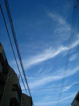 2008092401.jpg
