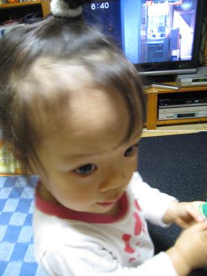 2008110501.jpg