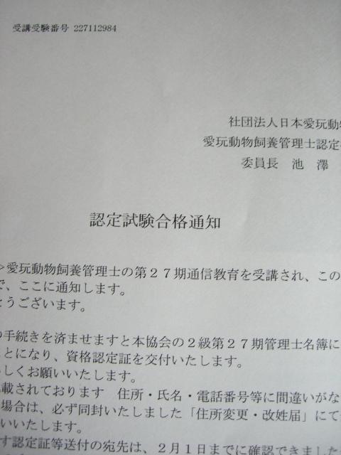 CIMG3204.jpg