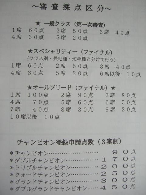 icc1.jpg