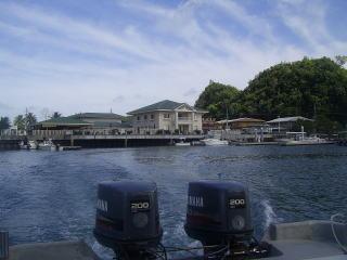ボートから見るネコマリン