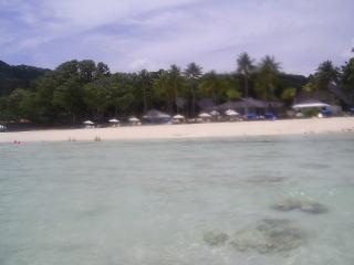 海から見たPPRのビーチ