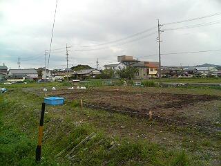 農園20.4.20