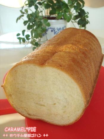 トヨ型deラウンドパン