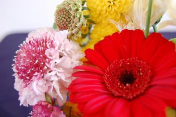 今年はカラフルなお花にしました♪