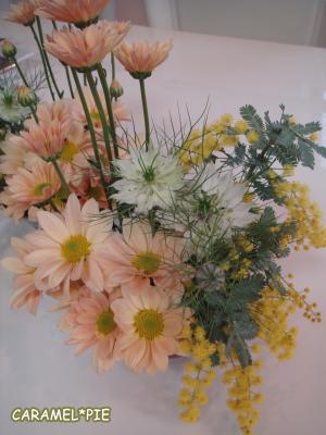 キレイな色の菊の花☆
