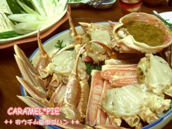 蟹☆カニ旅行