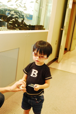 パパのサングラス♪*