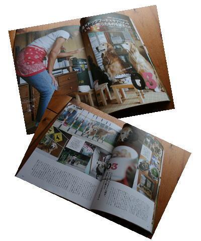 2007book.jpg