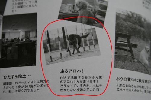 2007book2.jpg