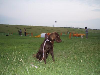 200809023.jpg