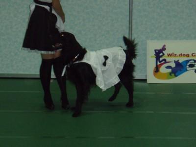 dance6.jpg