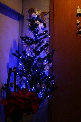 irumi-tree.jpg