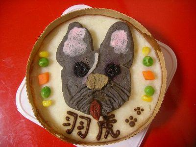 羽虎ケーキ