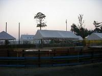 ドッグレース場