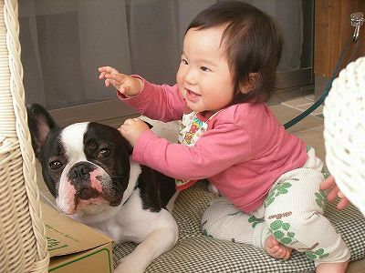 『nanaちゃん、やめてくださいな』