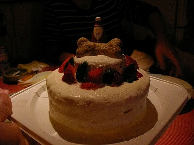 犬用ケーキ♪