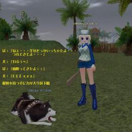 20080330006.jpg