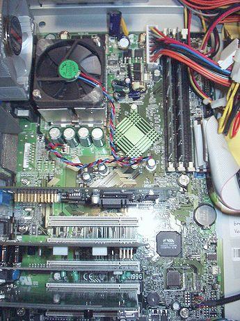 P9120028r.jpg
