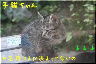 20060923_002.jpg