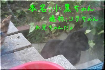 20060923_006.jpg
