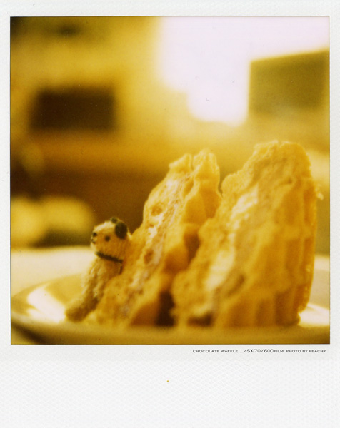 sx-waffle01.jpg