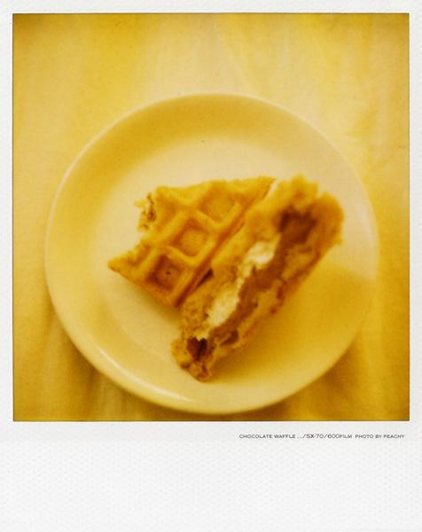 sx-waffle02.jpg