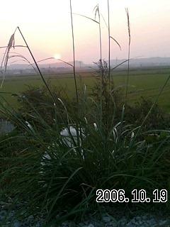 20061020100831.jpg