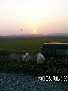 200610201008314.jpg