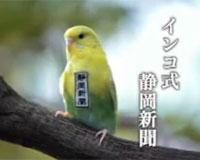 インコ式静岡新聞 30秒ver.