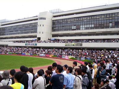 07秋華賞 パドック